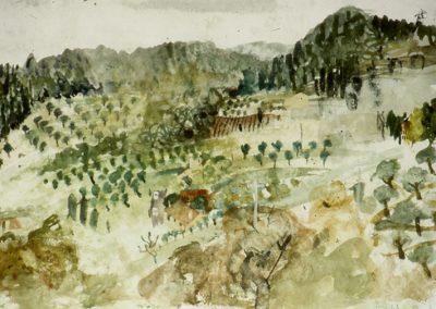 Monte Benni